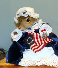 SugarBush Squirrel, American style