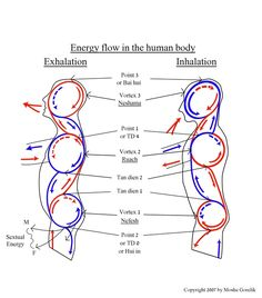 - The Out-of-Body-Experience. A Place Where Science and Spirituality Meet. The Out-of-Body-Experience. A Place Where Science and Spirituality Meet. Qi Gong, Le Mal A Dit, Tai Chi Exercise, Tai Chi Qigong, Les Chakras, Martial Arts Workout, Human Anatomy And Physiology, Out Of Body, Chakra Meditation