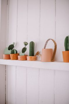 Make This Kids Cacti Garden & Watering Can Cardboard Paper, Cardboard Crafts, Water Garden, Cacti Garden, Watering Can, Cactus, Planter Pots, Make It Yourself, Canning