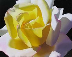 Single Yellow Lemon Rose by Brian Davis