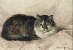 On a Pink Pillow Henriette Ronner-Knip Oil on Panel 1897 Private Collection