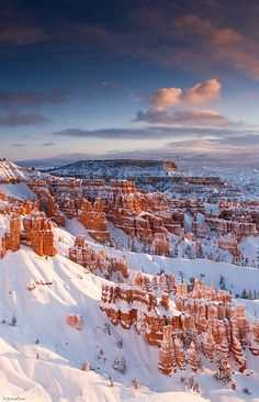 Morning Light - Bryce Canyon National Park, Utah by Jeremy Pierce on Flickr.