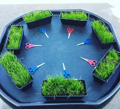 Cutting real grass grown in recycled tubs ♻️ Planets Activities, Eyfs Activities, Nursery Activities, Motor Skills Activities, Spring Activities, Toddler Activities, Tuff Spot, Outdoor Learning, Home Learning