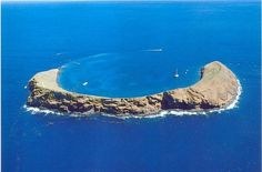 I'll be snorkeling in the Molokai Crater in less than a month!!