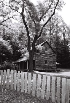Old homestead in Cades Cove. Great Smoky Mountains National Park.  Lori's second favorite place.