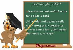 Romanian Language, My Job, Box Art, Grammar, Homeschool, Nostalgia, Teaching, Memes, Movie Posters
