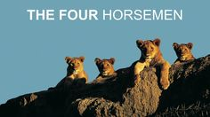 Relationship and Marriage Advice | The Gottman Relationship Blog: The Four Horsemen: Criticism