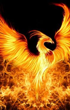 Phoenix Backgrounds For Android with image resolution pixel. You can make this wallpaper for your Android backgrounds, Tablet, Smartphones Screensavers and Mobile Phone Lock Screen Phoenix Artwork, Phoenix Wallpaper, Phoenix Images, Dragon Artwork, Phoenix Bird Tattoos, Phoenix Tattoo Design, Phoenix Wings, Phoenix Rising, Mythical Creatures Art