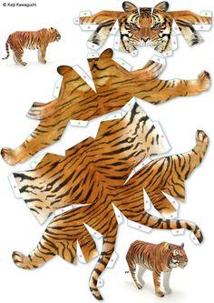 tiger.jpg (2067×2925)