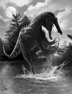 Hybodus lived alongside the dinosaurs. It was hunted by spinosaurus groups from baryonyx and suchomimus. They even lived during the eocene