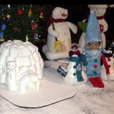 Elf built a marshmallow igloo
