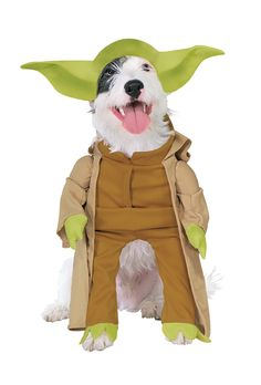 [Halloween Costumes Ideas] Rubies Costume Star Wars Collection Pet Costume, Yoda with Plush Arms, Small * You can find more details by visiting the image link. (This is an affiliate link) Yoda Dog Costume, Costume Star Wars, Family Halloween Costumes, Pet Costumes, Animal Costumes, Dinosaur Costume, Chien Halloween, Dog Halloween, Homemade Halloween