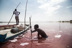 Lake Retba, Senegal  Two men harvest salt in the pink waters of Lake Retba. Senegal is the largest salt producer in west Africa, mining over 450,000 tonnes every year. The water's unusual colour derives from the pink algae that flourishes on the high salt content.