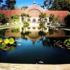 Amazing Spanish architecture, great for a run or a family day out. It is a must-see in San Diego!