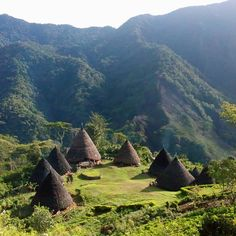 Wae Rebo Village in Flores, Indonesia An old village isolated in mountain scenery with Mbaru Niang, a traditional, circular cone-shaped houses