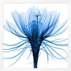 Framed Art - Hand-picked-blue-2 - Wendover Art Group