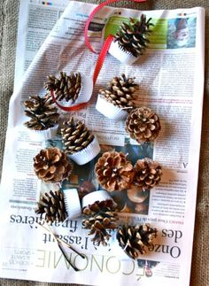 Amazing DIY Pinecone Firelighters For A Cold Season | Shelterness