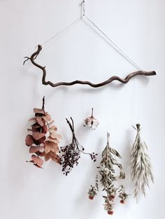 Pompon Bazar, Paris, photo Billie Blanket Macrame Wall Hanging Diy, Hanging Plant Wall, Flower Wall Decor, Flower Decorations, Diy Fleur, Dry Plants, Cheap Wall Decor, Beautiful Flower Arrangements, Botanical Prints