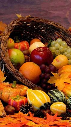 Gardening Autumn - Autumn Cornucopia - With the arrival of rains and falling temperatures autumn is a perfect opportunity to make new plantations Fruit And Veg, Fruits And Vegetables, Photo Fruit, Vegetable Pictures, Fall Pictures, Fall Photos, Fruit Art, Fall Harvest, Harvest Time