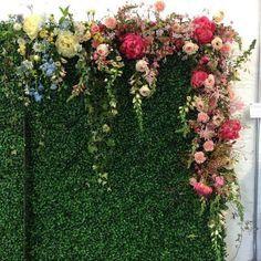 blooming wall