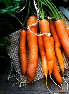 7 Orange Fruits and Vegetables You Should Eat Everyday . Carrot Recipes, Raw Food Recipes, Great Recipes, Healthy Recipes, Fruit And Veg, Fruits And Vegetables, Cooked Carrots, Food Club, Kale