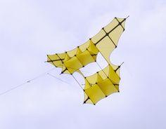Cody Box kite