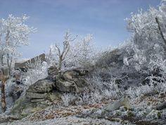 Snow071 by cheryl astern