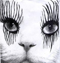Cher Cat