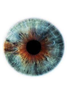 Blog de cursoiridologia : IRIDOLOGIA - CURSO DE IRIDOLOGIA A DISTÂNCIA, ESTUDO DA ÍRIS - LINFÁTICA