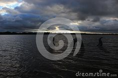 A sea monster surfaces along the shore of Medicine Lake close to sunset under dark clouds.