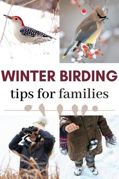Have a successful winter birding outing with kids using these parent tips. Birding is a great hobby that gets kids outside in winter and teaches them a love of nature