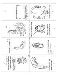 silkworms fuzzy moths and silky worms fun and facts booklet activities the silkworm and. Black Bedroom Furniture Sets. Home Design Ideas