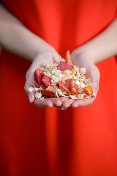 Peach Echo - our recommended mix is Coral Reef Spring Wedding Colors, Autumn Wedding, Wedding Colours, Wedding Confetti, Pantone Color, On Your Wedding Day, Color Trends, Dried Flowers, Biodegradable Products