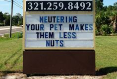 eau gallie veterinary clinic | of humorous but racy signs outside the Eau Gallie Veterinary Hospital ...