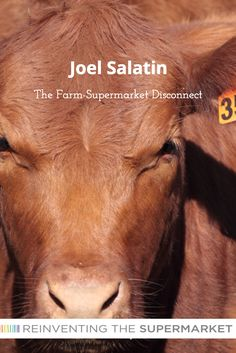 Joel Salatin - Healing and the Farm-Supermarket Disconnect Joel Salatin, Farming System, Michael Pollan, Food System, Ecology, Farmer, Choices, Healthy Food, Healing