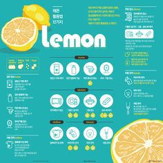 Lemon inclusion and easily understood facts. Food Graphic Design, Graphic Design Tutorials, Food Design, Creative Design, Banner Design, Layout Design, Timeline Infographic, Infographics, Visual Communication Design