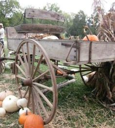 Great old wagon with pumpkins