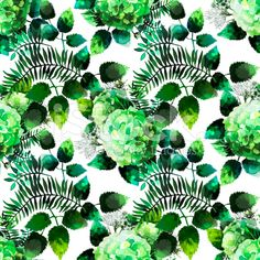 green hydrangea painting - Google Search