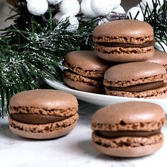 Chocolate Macaroons Made Easy - Snacks - Macarons Macaroon Recipe Without Almond Flour, Macaroon Filling, Macaroon Cookies, French Macaroon Recipes, French Macaroons, Macroons Recipe, Chocolate Macaroons, Chocolate Macaron Recipe, Almond Macaroons