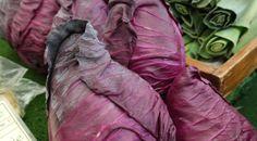 Šťáva ze zelí působí proti rakovině! A tady je návod, jak ji připravit