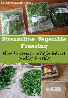 Streamline Vegetable Freezing for Quick Processing of Large Batches