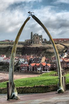 The Whale Bones, Whitby