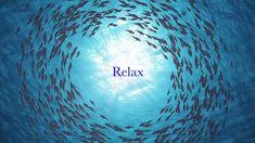 Deep Sleep Music, Sleep Dream, Deep Relaxation, 5 Hours, Stress Relief, Zen, Meditation, Study, Calm