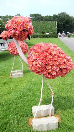 Vaccinium Conference and Floriade 2012 would be great for my flamingo & football birthday party Pink Flamingo Party, Flamingo Decor, Pink Flamingos, Yard Flamingos, Flamingo Birthday, Exotic Birds, Colorful Birds, Bird Barn, Barn Owls