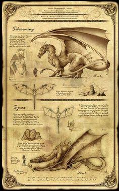 Dragonkin_part_ii_silverwing_and_syray_feliche.jpg (336×536)