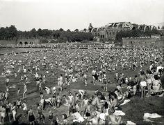 Im Hintergrund die Ruine Stadthalle, vorn das große Schwimmbad, fotografiert vor 1952