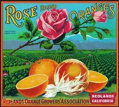 Redlands, California, Rose Brand Citrus Label