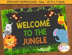 Jungle Bulletin Boards, Jungle Theme Classroom, Summer Bulletin Boards, Jungle Theme Birthday, Jungle Party, Safari Party, Classroom Themes, Jungle Safari, Zoo Decor
