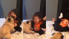 It's a play date! This baby and pug make the most adorable friends as they play with each other on a bed.