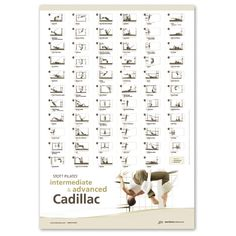 Stott Pilates Wall Chart ~ Intermediate/Advanced Cadillac